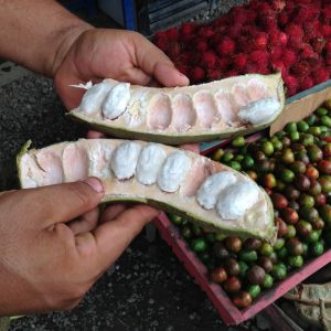 Guaba is a popular fruit at Casa Las Brisas Costa Rica